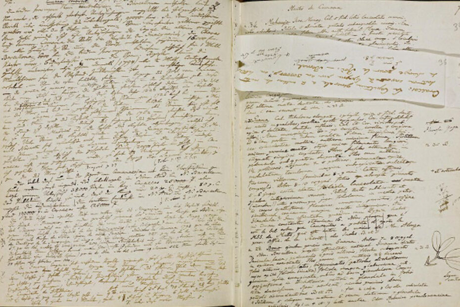 Pages from Alexander von Humboldt's American Travel Diaries 1799-1804: showing post-travel reflections pasted directly on top of on-site travel notations. Source: Berlin State Library/Prussian Cultural Heritage